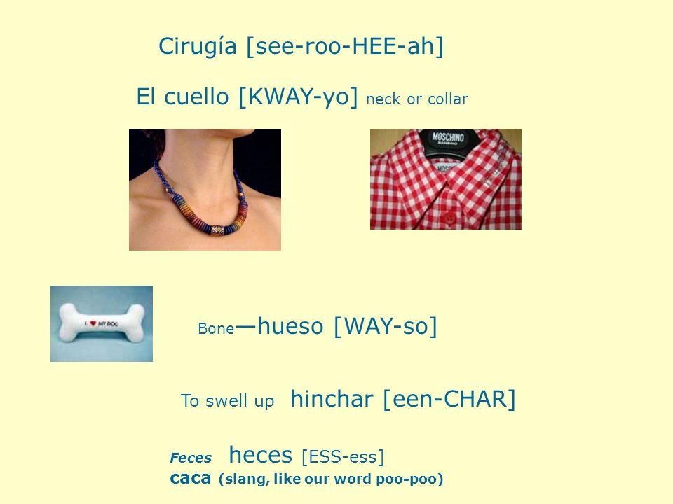 Cirugía [see-roo-HEE-ah]